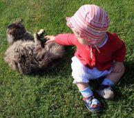 Fotogalerie capáčky Pohoda v trávě - krásná modelka s kočičkou
