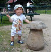 Fotogalerie capáčky Malý hříbeček :-)