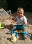 Fotogalerie capáčky Šedý lvíček na písku