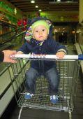 Fotogalerie capáčky Poprvé v nákupním vozíku:-)